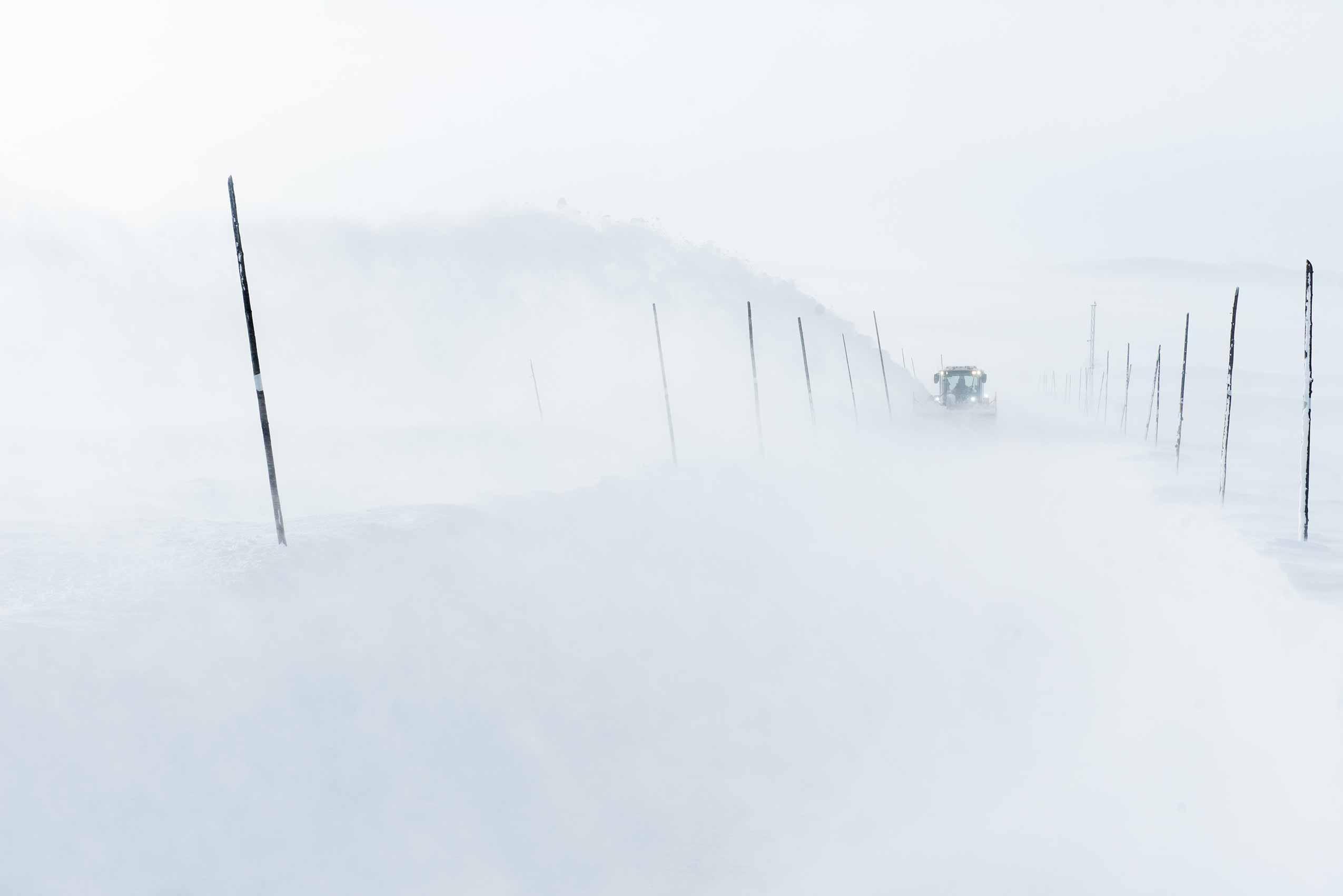flokk_focus_snowplough_hag_capisco_03