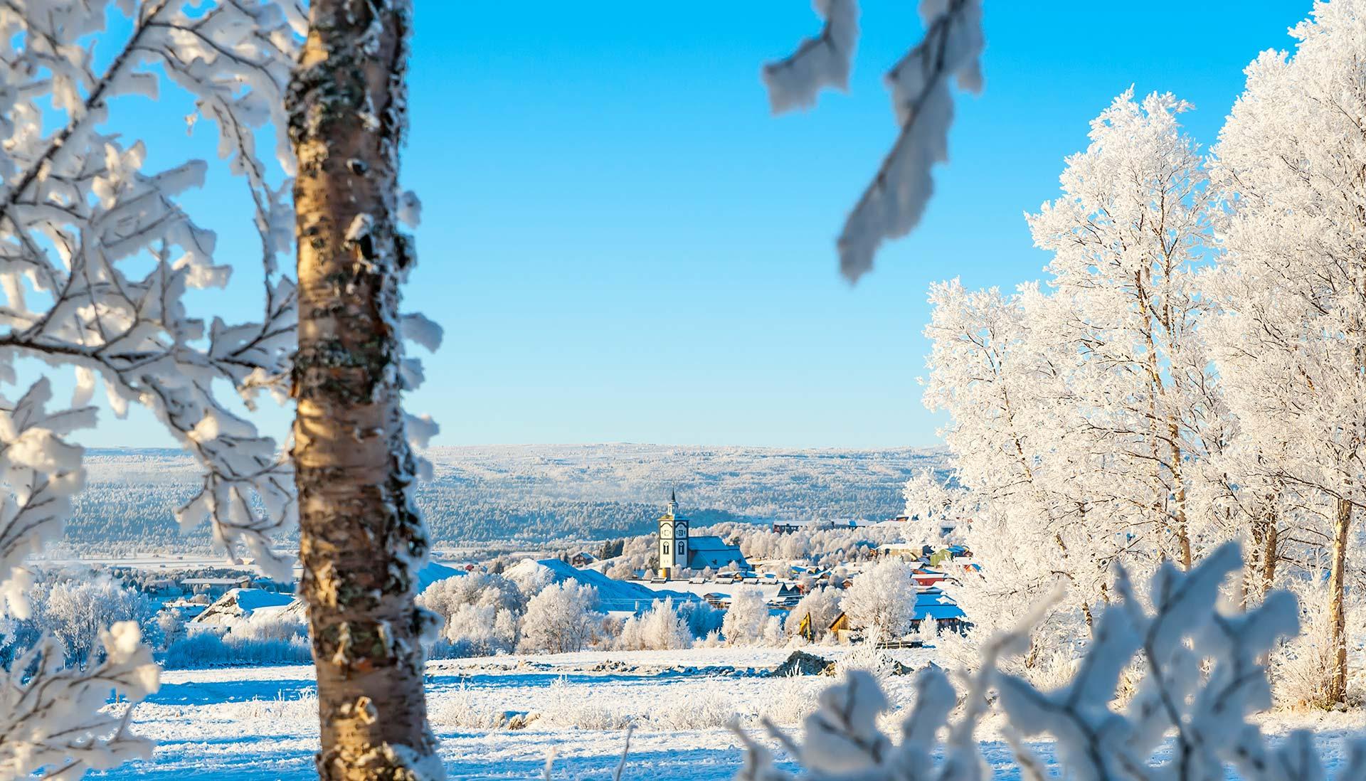 winter landscape image of Roros, Norway